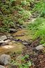 Sobranes Creek - Garrapata (108)