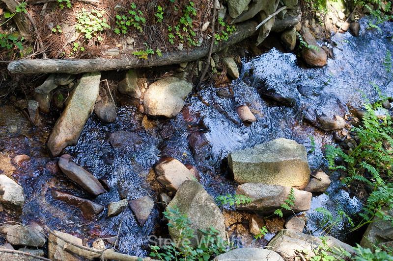 Sobranes Creek - Garrapata (62)