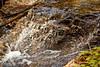 Sobranes Creek - Garrapata (45)
