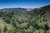 Garrapata Hills - Garrapata (8)
