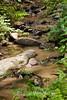 Sobranes Creek - Garrapata (110)