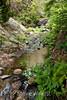Sobranes Creek - Garrapata (92)