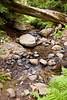 Sobranes Creek - Garrapata (75)