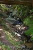Sobranes Creek - Garrapata (60)