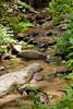 Sobranes Creek - Garrapata (109)