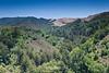 Garrapata Hills - Garrapata (5)