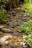 Sobranes Creek - Garrapata (43)