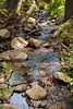 Sobranes Creek - Garrapata (29)