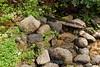 Sobranes Creek - Garrapata (106)