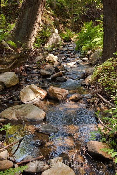 Sobranes Creek - Garrapata (27)