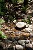 Sobranes Creek - Garrapata (53)