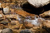 Sobranes Creek - Garrapata (52)