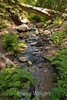Sobranes Creek - Garrapata (5)
