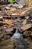 Sobranes Creek - Garrapata (36)