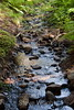 Sobranes Creek - Garrapata (104)