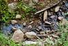 Sobranes Creek - Garrapata (96)