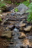 Sobranes Creek - Garrapata (99)