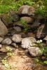 Sobranes Creek - Garrapata (107)