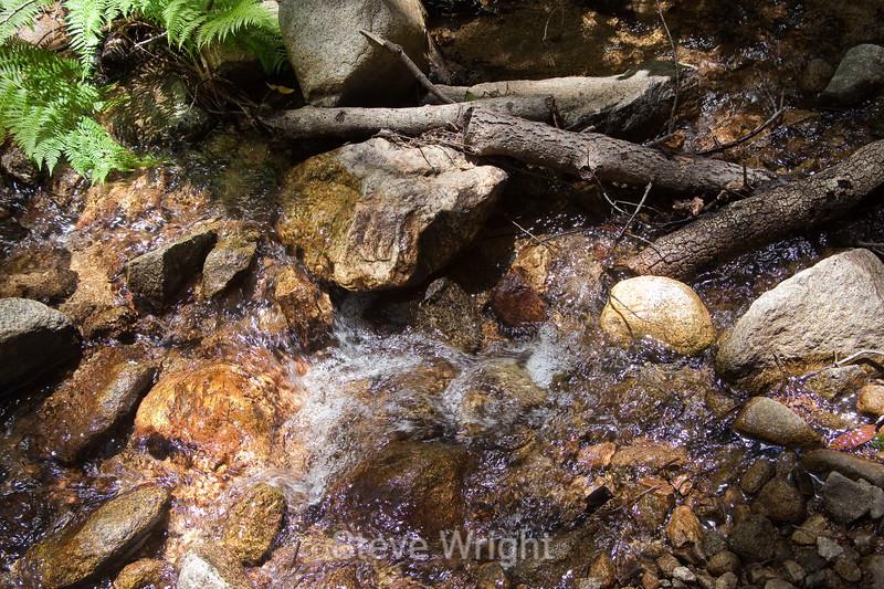 Sobranes Creek - Garrapata (50)