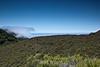 Garrapata Hills - Garrapata (6)