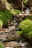 Sobranes Creek - Garrapata (67)