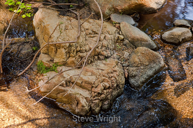 Sobranes Creek - Garrapata (26)