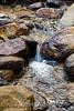 Sobranes Creek - Garrapata (101)