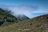 Garrapata Hills - Garrapata (7)