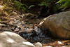 Sobranes Creek - Garrapata (17)