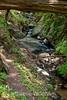 Sobranes Creek - Garrapata (72)