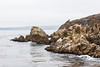 Granite Point - Point Lobos #6322