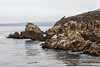 Granite Point - Point Lobos #6300