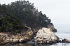 Guillmot Island - Point Lobos #6411