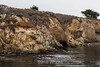 Granite Point - Point Lobos #6310