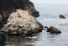 Guillmot Island - Point Lobos #6415