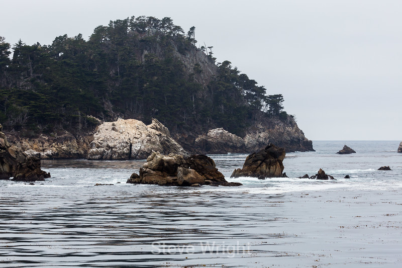 Guillmot Island and Pinnacles - Point Lobos #6246