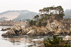 Cannery Point - Point Lobos #6432
