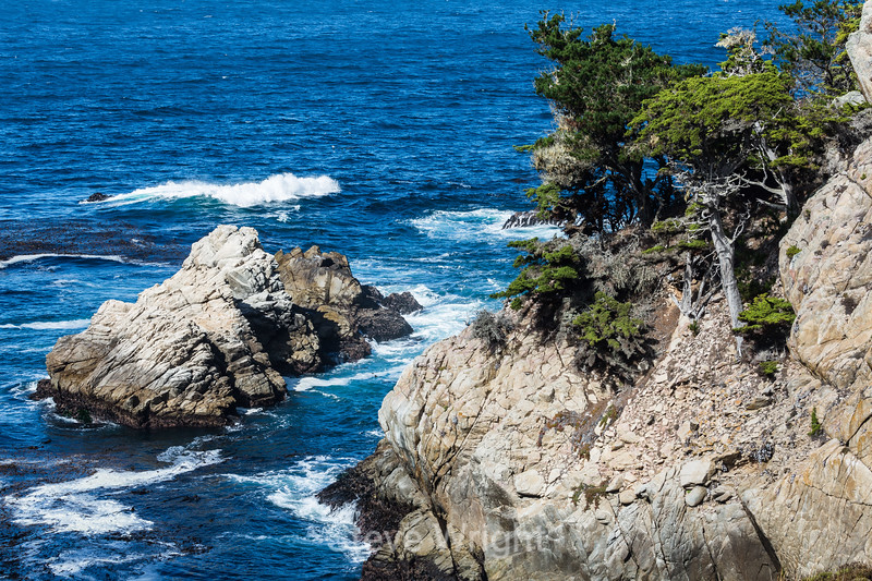 Cannery Point - Point Lobos #6375