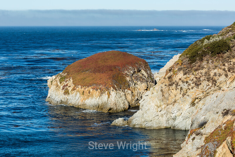 China Cove - Point Lobos #5871