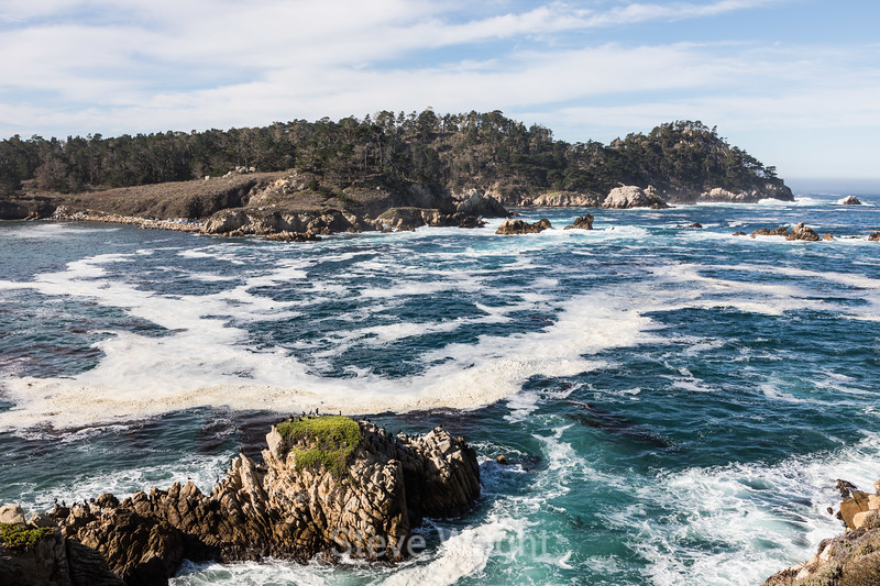 Whaler's Cove & Cannery Point - Point Lobos #5195