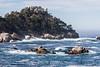 Big Dome, Pinnacles & Guillmot Island - Point Lobos #5220
