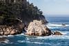 Big Dome & Guillmot Island - Point Lobos #5339