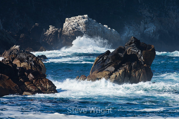 Point Lobos 12-27-2011