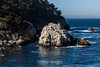 Guillmot Island - Point Lobos #6695