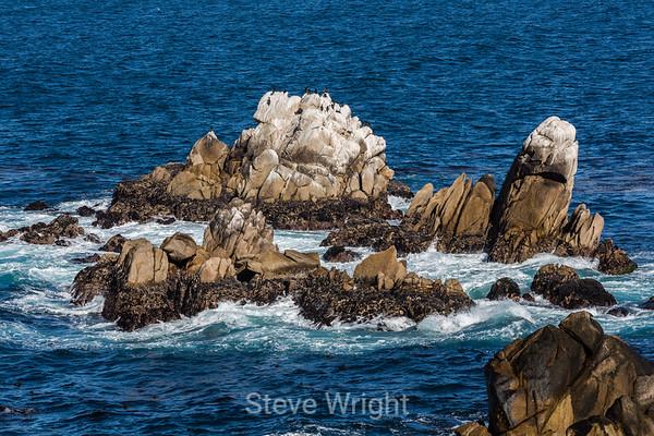 Point Lobos 12-27-2013
