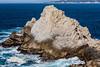 Pinnacle Rock - Point Lobos #6727