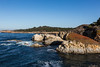 China Cove - Point Lobos #6526