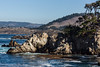 Cannery Point - Point Lobos #6702