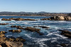 Moss Cove - Point Lobos #6582