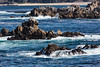Moss Cove - Point Lobos #6716